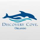 Discovery Cove Day Resort - 1 Dia - Sem Nado (3 anos ou mais)